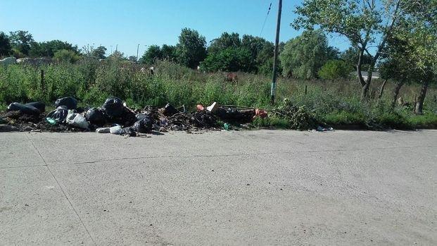 Preocupa la acumulación de basura en la vía pública 146 bis y 69