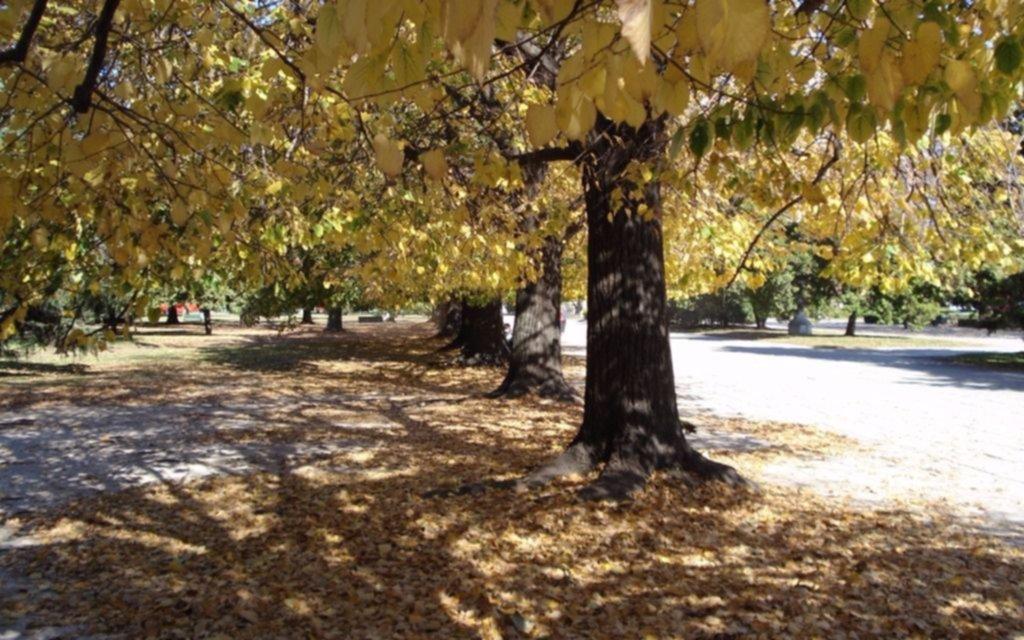 El otoño inicia con cielo algo nublado y máxima de 25 grados