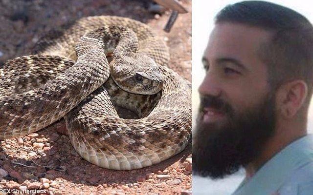 Quiso besar a una serpiente cascabel en la boca: está en coma