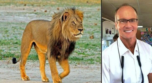 Piden la extradición del dentista estadounidense que mató a Cecil