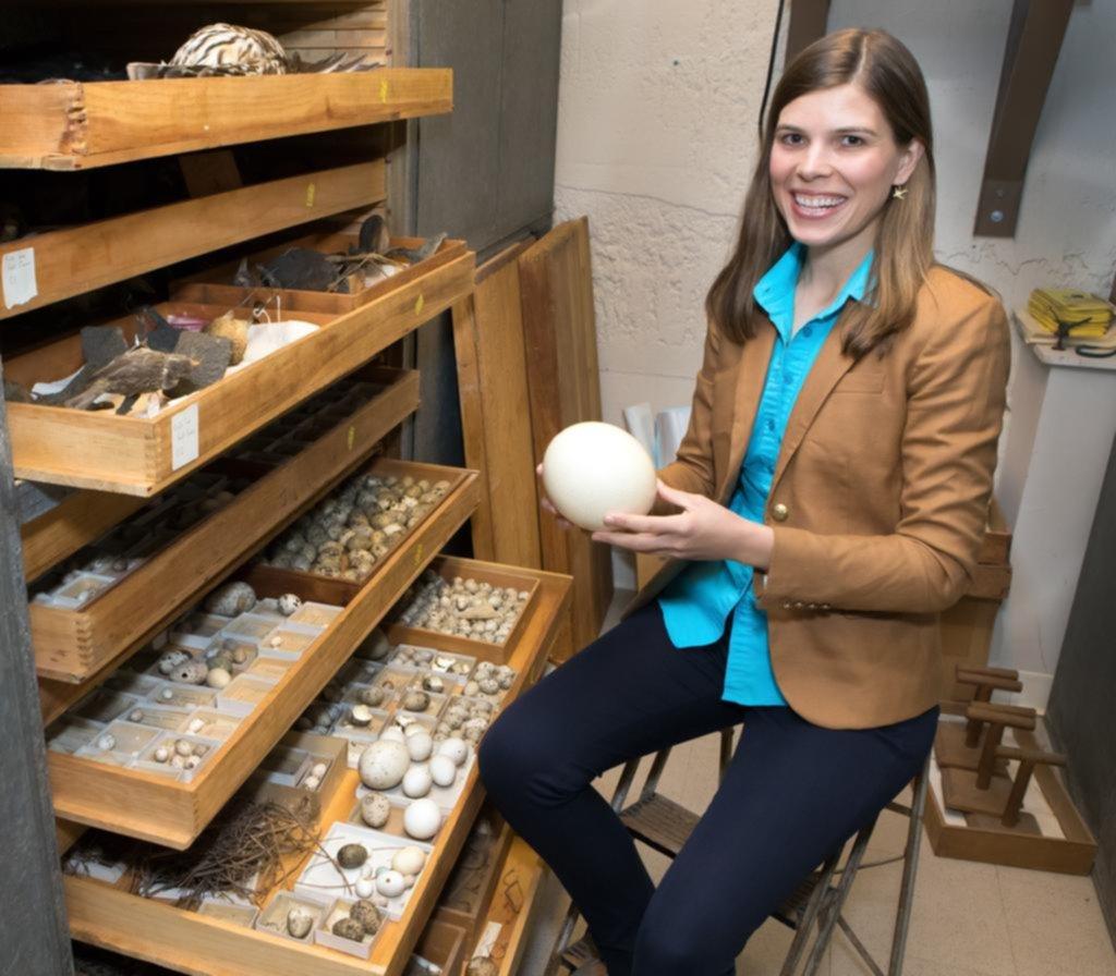 Sorprendente hallazgo sobre las distintas formas que tienen los huevos de las aves