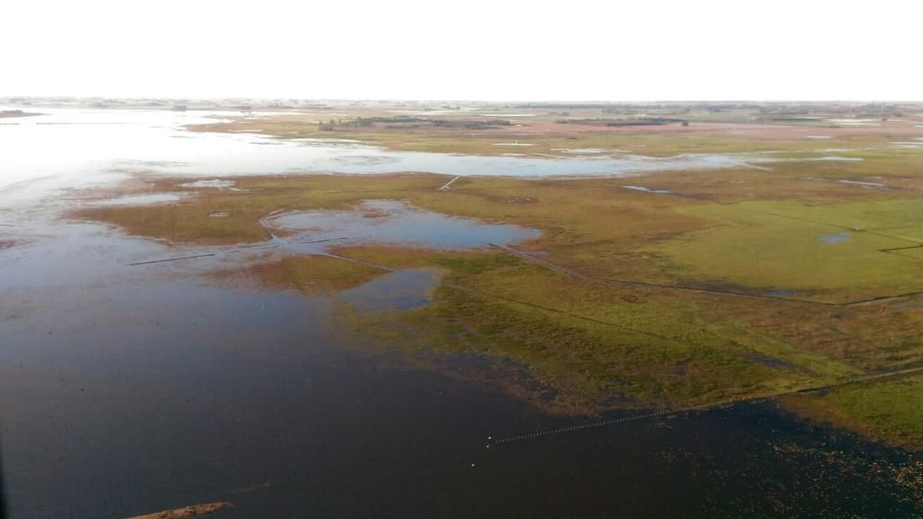 Más de 8 millones de hectáreas afectadas