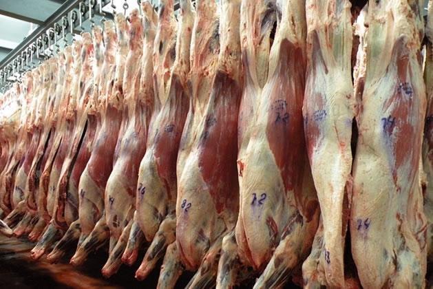 Argentina autorizó importación de carne vacuna desde Brasil