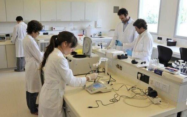 Las universidades incorporarán 340 científicos del Conicet