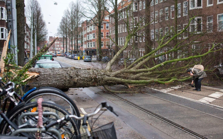Fuerte tormenta deja al menos ocho muertos en Alemania