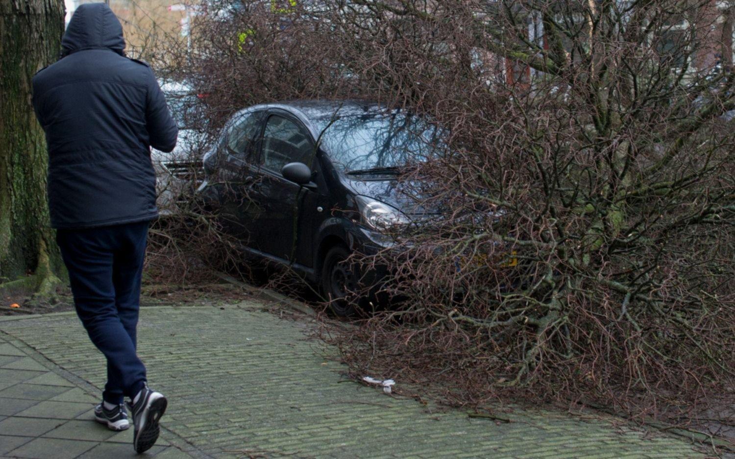 Tempestad con vientos huracanados azota Alemania, Bélgica y Holanda: 9 muertos