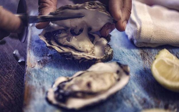 Un hombre murió por una bacteria del mar