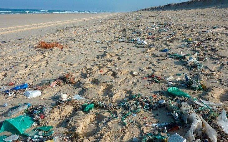 Aseguran que más del 80% de los residuos no orgánicos en playas bonaerenses son plásticos