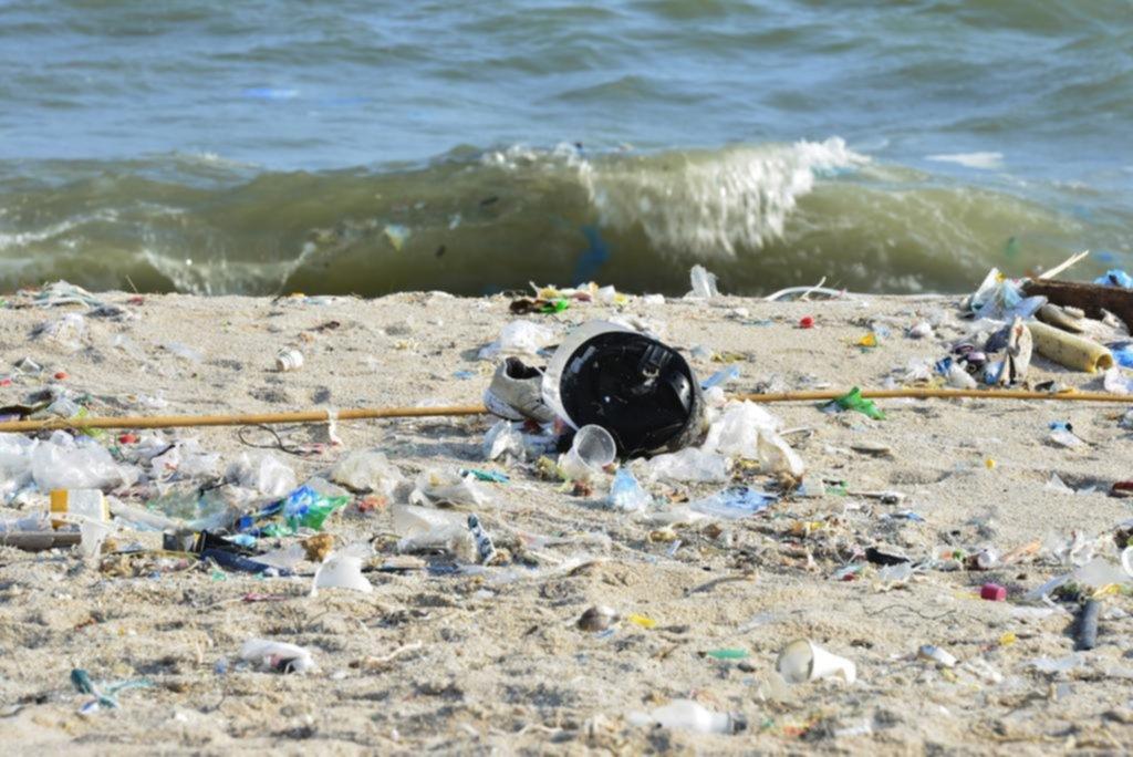 Más del 80% de los residuos no orgánicos en las playas bonaerenses son plásticos