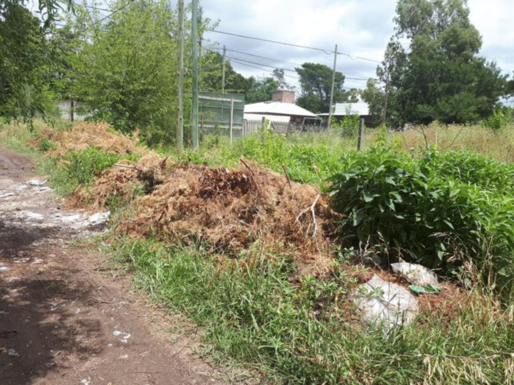 Un baldío lleno de mugre tiene a maltraer a los vecinos de un barrio de City Bell