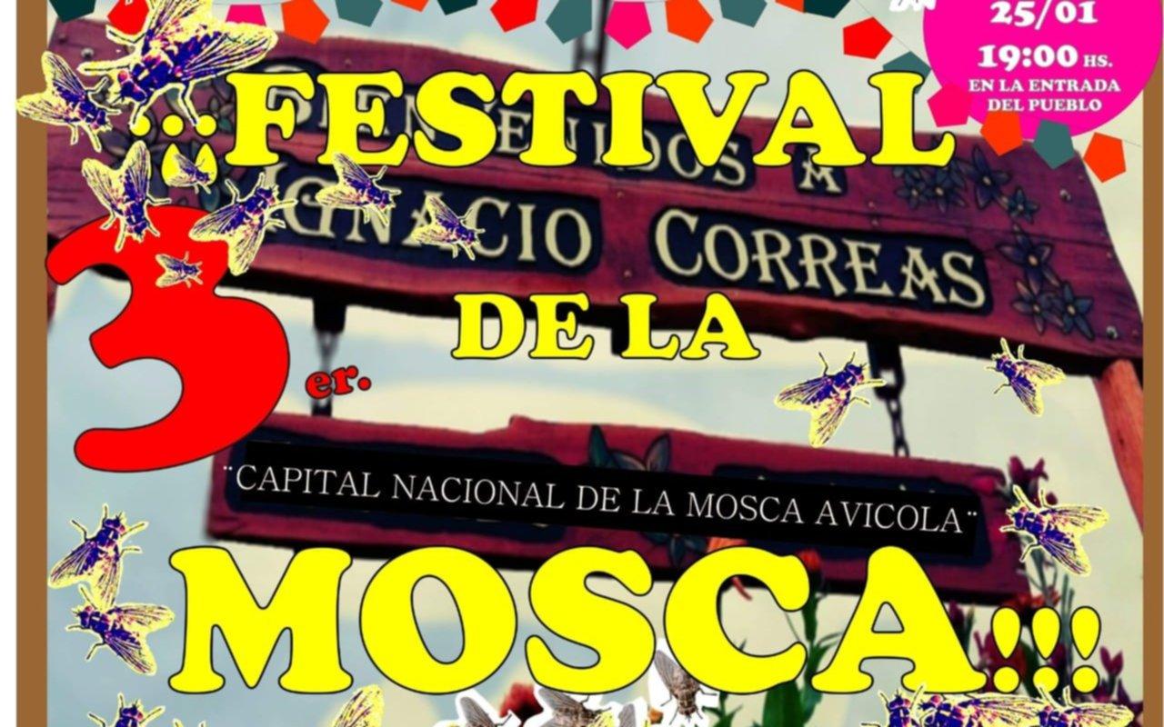 """Hartos de la invasión: en Ignacio Correas se viene la 3ª edición  del """"Festival de la Mosca"""""""