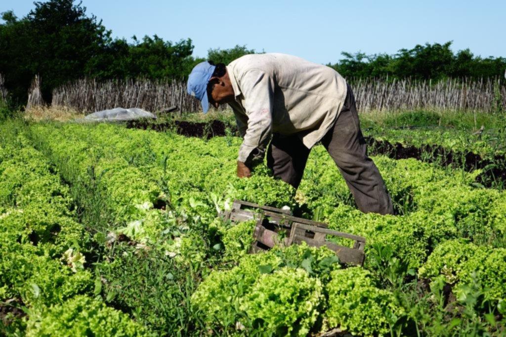 Hay productos que en las góndolas se pagan 1.090% más que en las quintas