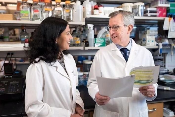 Descubren la manera en que se reproducen los tumores cancerígenos