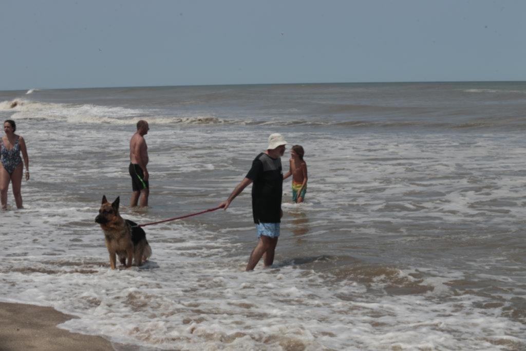 Playas de Pinamar, amigas de los perros y la naturaleza