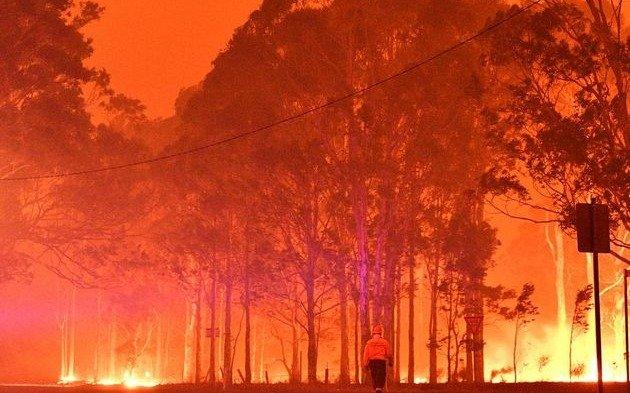 """Los incendios están """"mutando"""" por el cambio climático y Argentina tiene zonas """"vulnerables"""""""