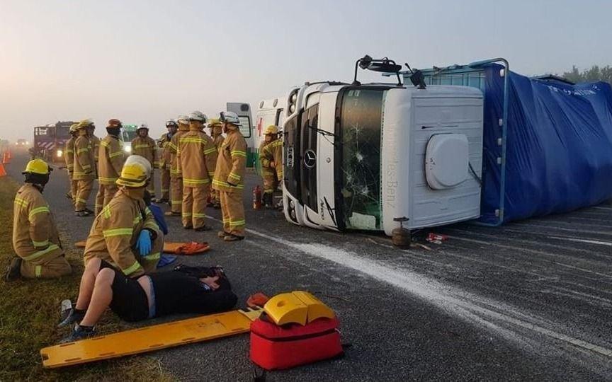 Un toro suelto en la ruta 2 causó un choque múltiple: hay cuatro heridos
