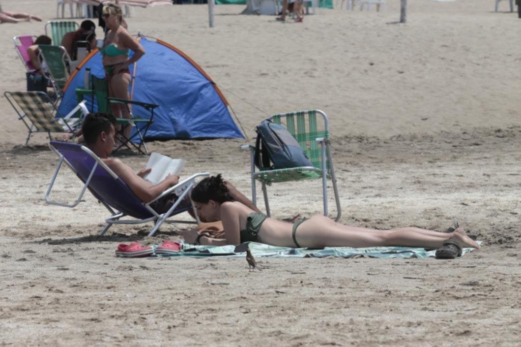 """Autoayuda, novelas """"para distraerse"""" y mucho celular: ¿qué se lee en las playas?"""
