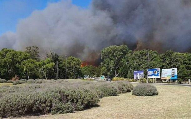 Incendio controlado pero no extinguido afecta el bosque de Villa Gesell