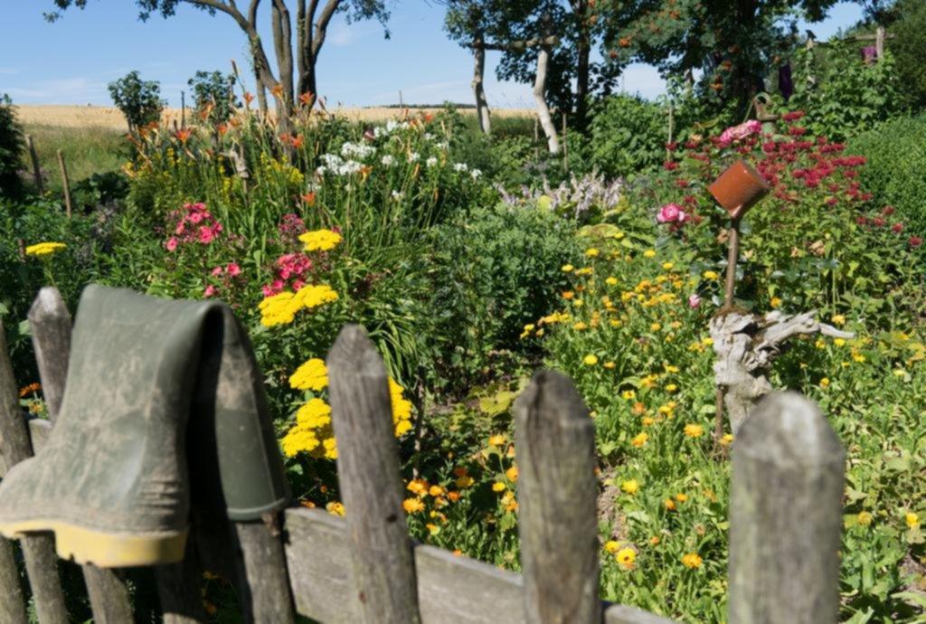 Huerta en casa: cómo plantar para poder cosechar