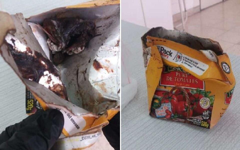Roedor en el puré de tomates en La Plata: salió el informe del laboratorio