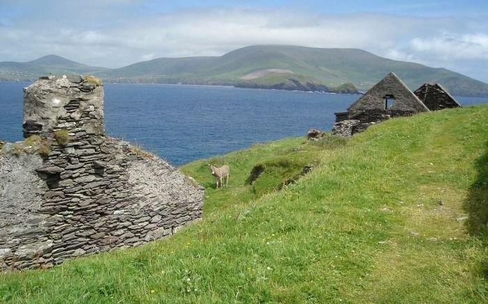 Buscan cuidadores para una isla paradisiaca y con todo pago: mirá los requisitos