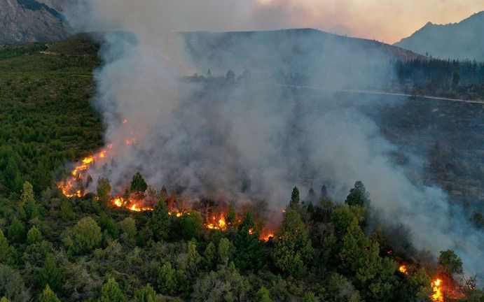 Arde El Bolsón: ya se quemaron más de 8.000 hectáreas y hay más de cien brigadistas combatiendo el fuego