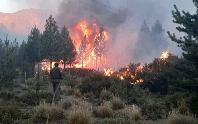 Graves incendios en El Bolsón: ¿Se iniciaron por un asado?