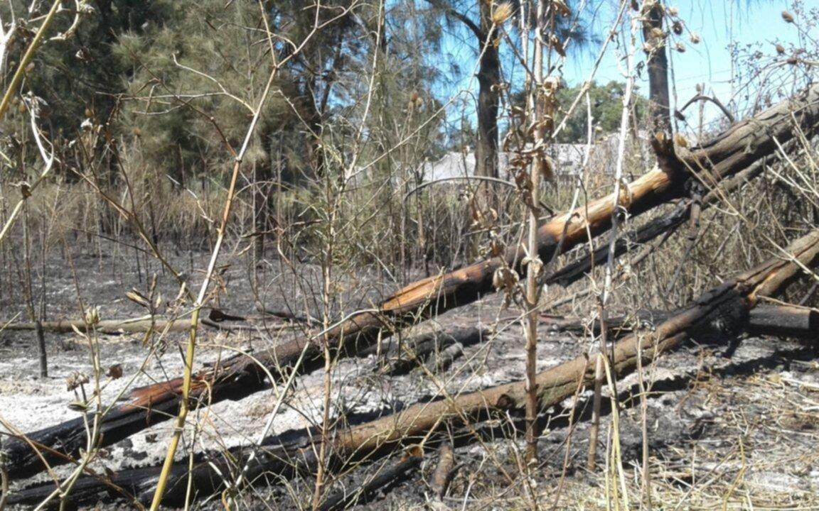 Un voraz y prolongado incendio en Abasto asustó a los vecinos