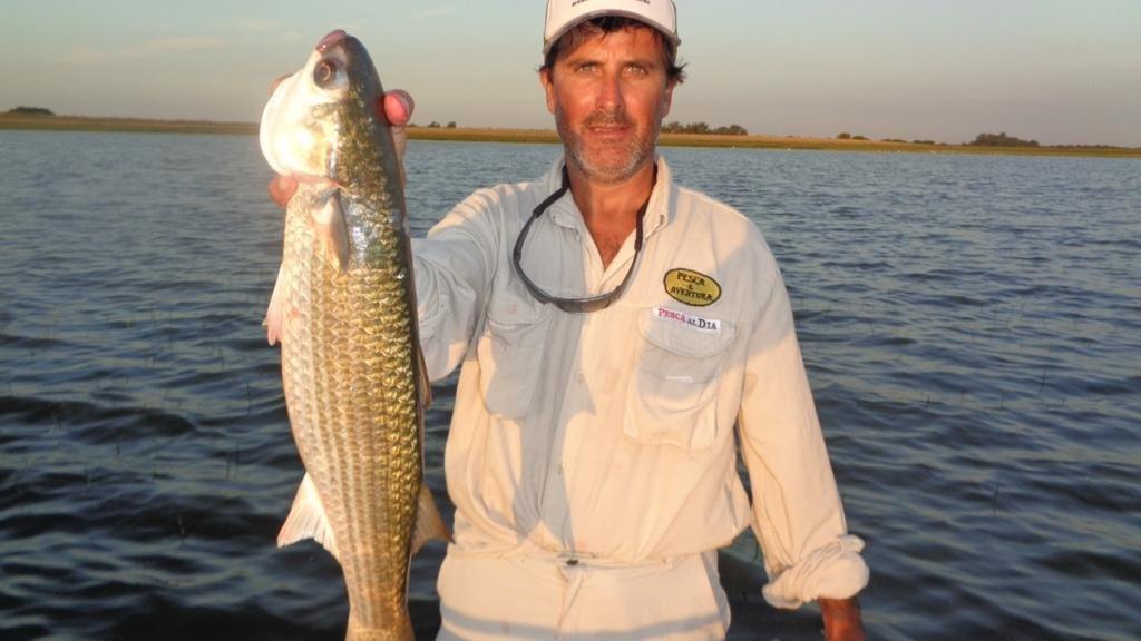 Una excelente pesca de lisones en la laguna Barrancas