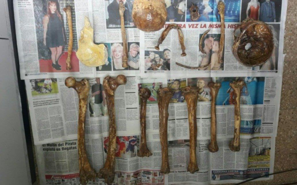 Revuelo en un sector de Ensenada por el hallazgo de restos óseos
