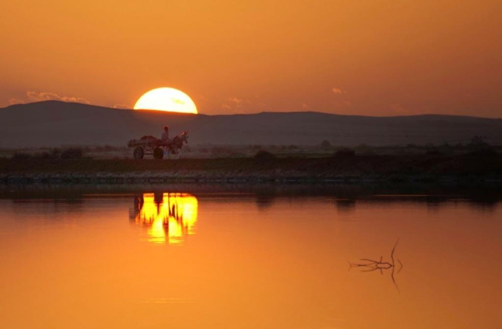 Siwa, el oasis más legendario y remoto para visitar en Egipto