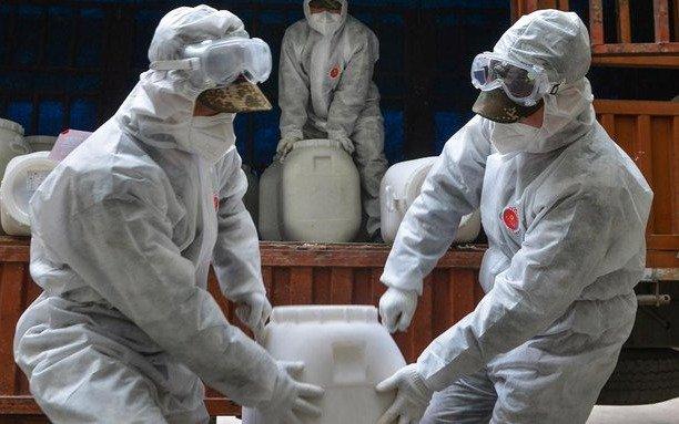 El coronavirus se cobra más vidas: 116 personas fallecieron en Hubei, la zona cero