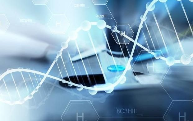 La edición genética logra en ratones prevenir una rara enfermedad hepática