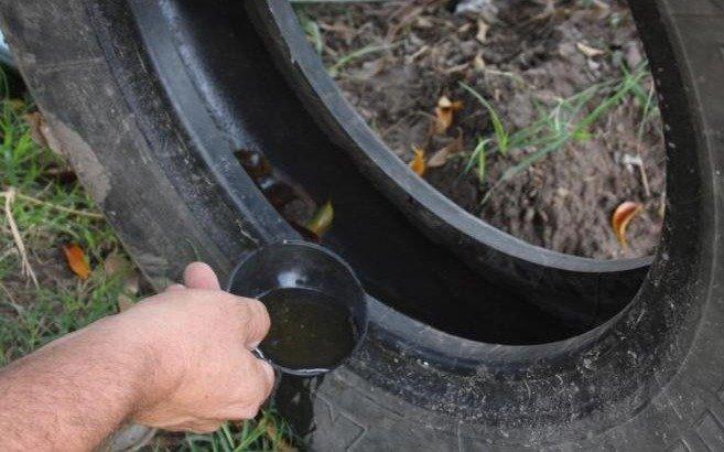 """Alerta por un audio """"tenemos dengue en el centro de la ciudad de La Plata"""""""
