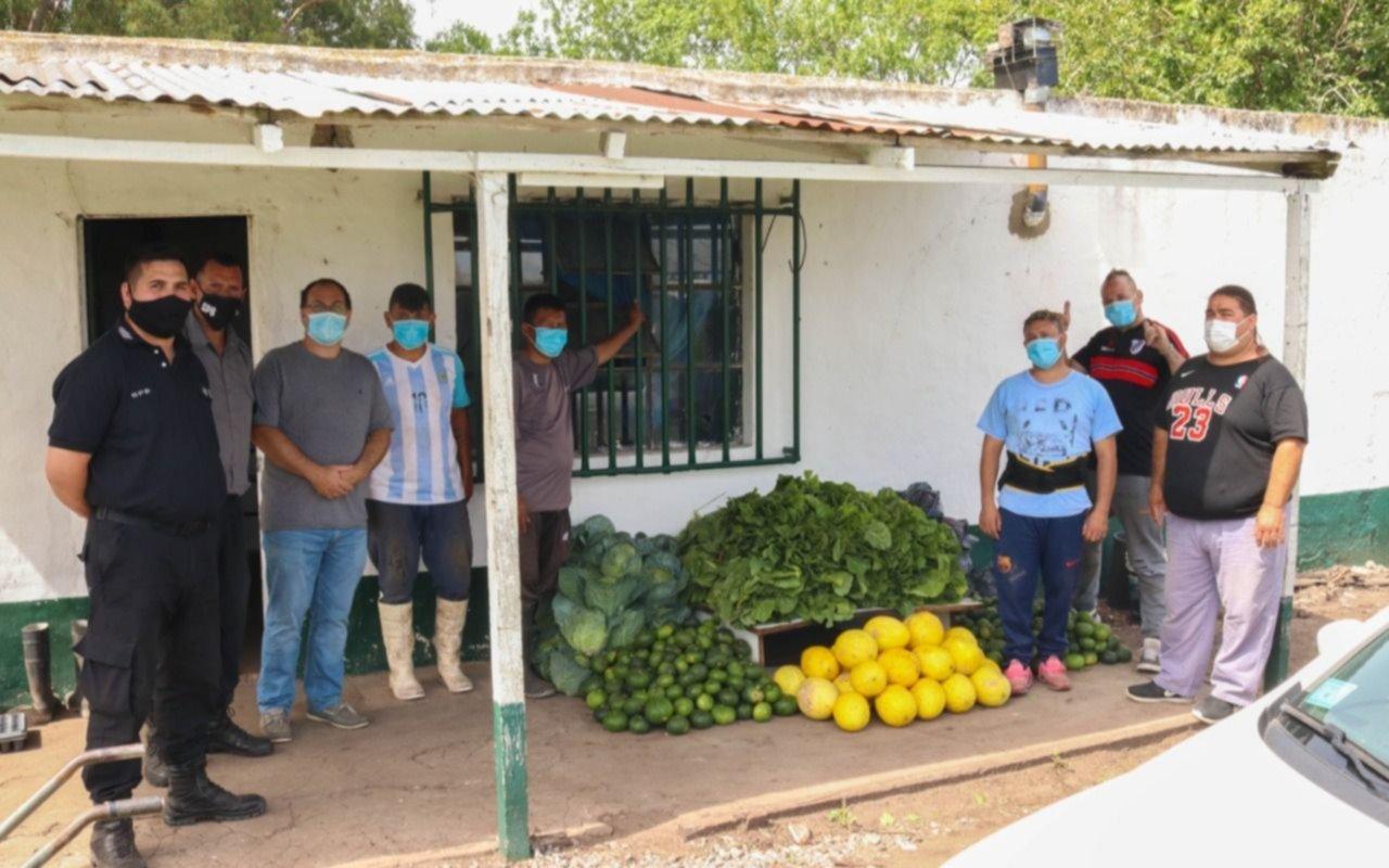 De huerta solidaria de una cárcel donaron acelgas, zapallitos y melones a hospital platense