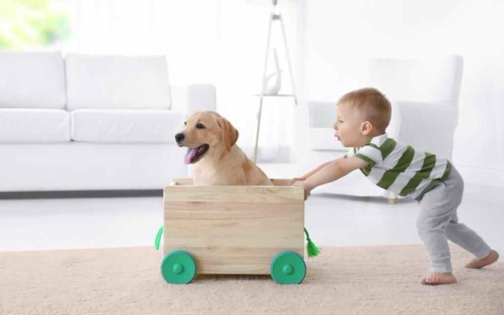 Regalarle una mascota a un nene implica responsabilidades