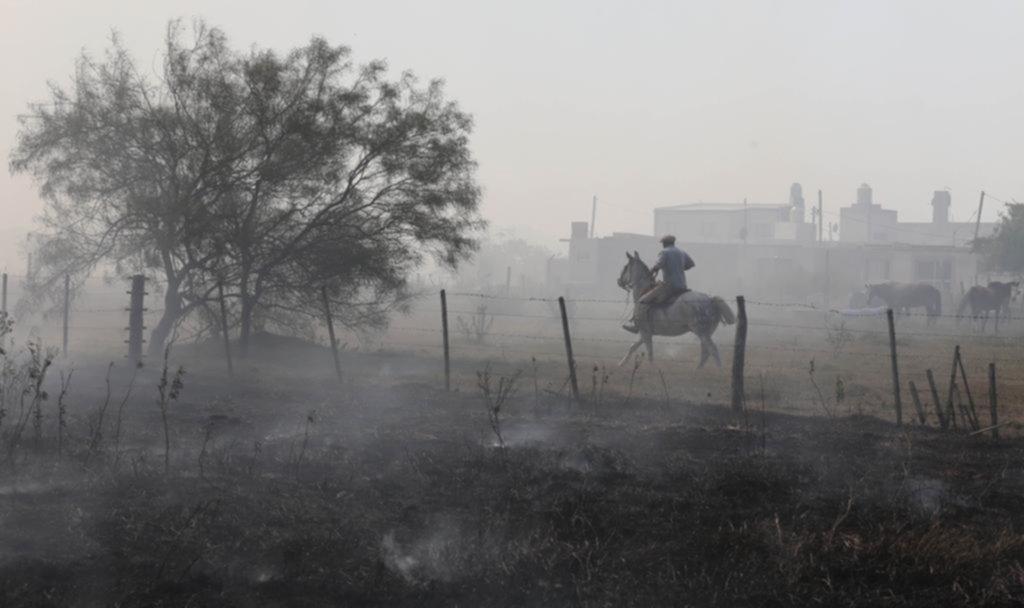"""La """"epidemia"""" de incendios forestales tuvo en vilo a Los Talas y el humo lo cubrió todo"""