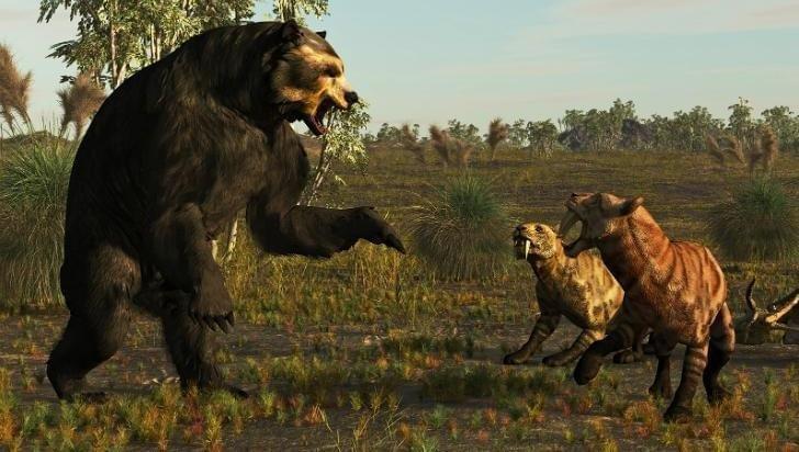 Un oso carnívoro gigante, el extraordinario hallazgo que reveló la bajante del río Salado