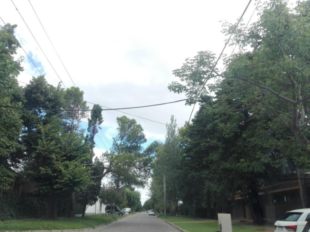 Reclamos por postes de luz y pérdidas de agua