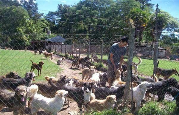 El hogar de perros Titucha necesita la ayuda de todos