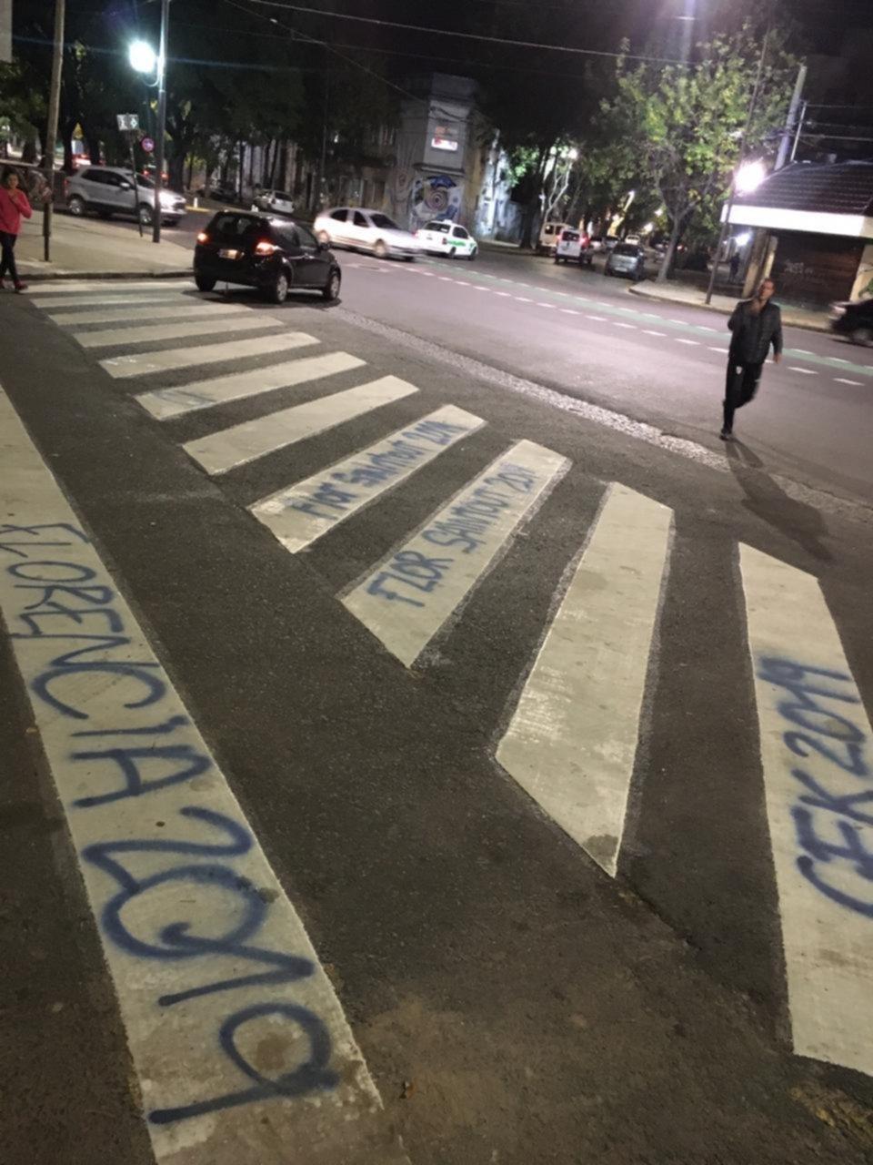 Garro quiere multar a una diputada kirchnerista por pintadas en la vía pública