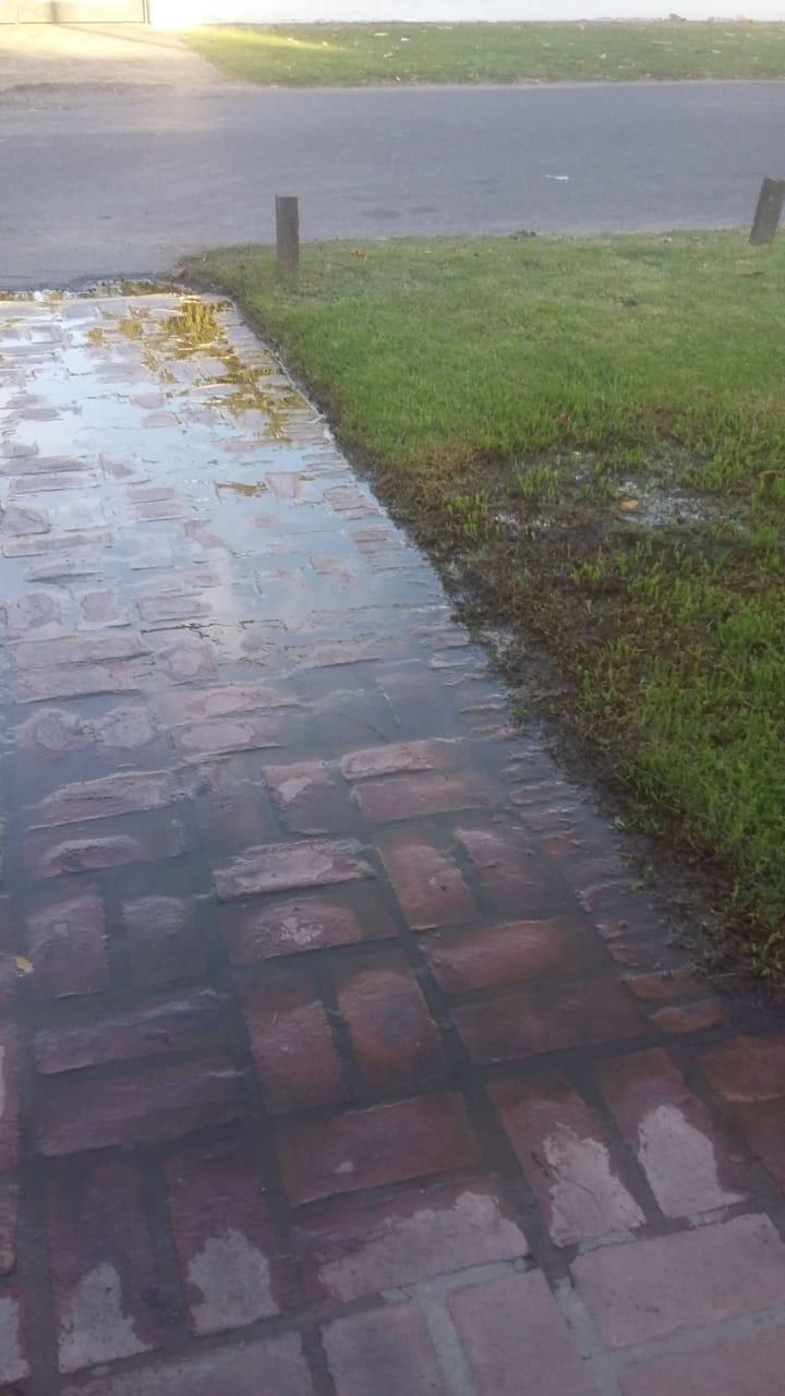 Derroche sin fin de agua en calle 503, 20 y 21