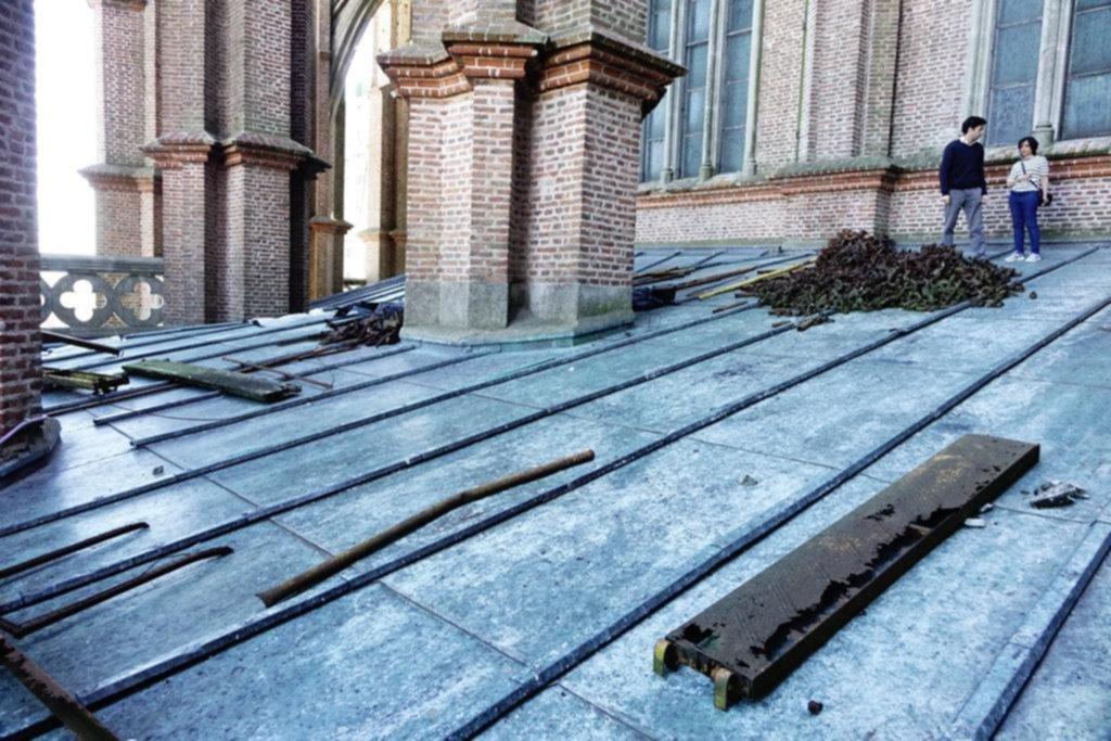 Prometen encarar obras de mejora en la Catedral platense