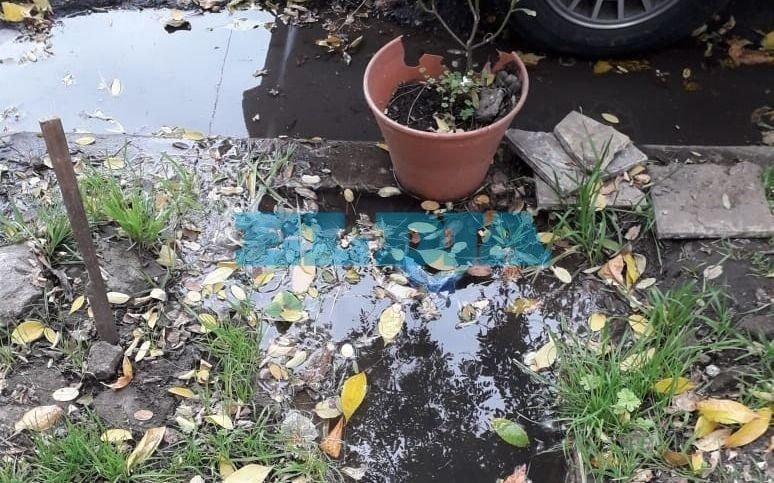 Caño roto y pérdida de agua en 16 y 66