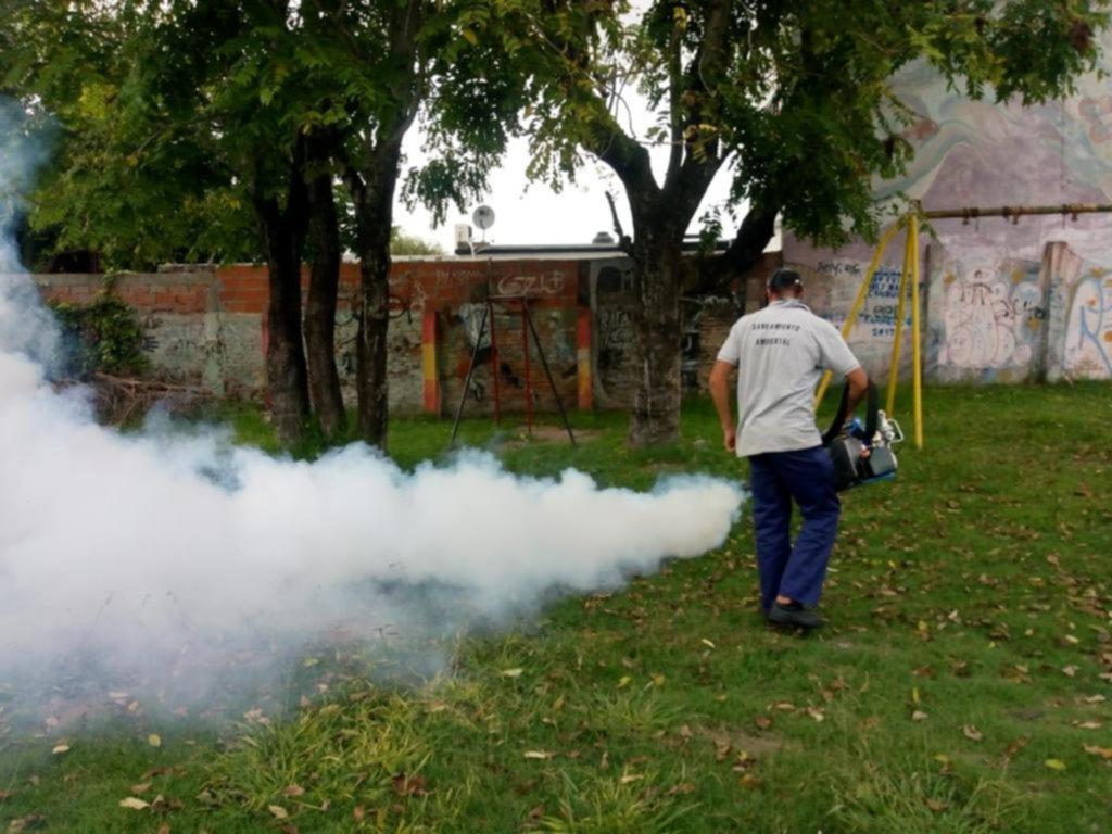El dengue no para: en La Plata ya son 75 los casos y el casco urbano es el más afectado
