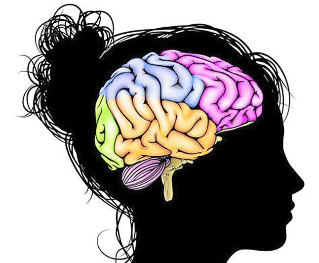 Hallan vínculo entre depresión en mujeres y proteína del cerebro