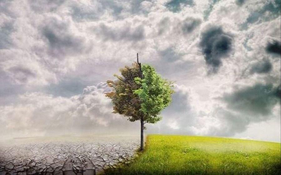 Una de cada 4 muertes se da por causas medioambientales