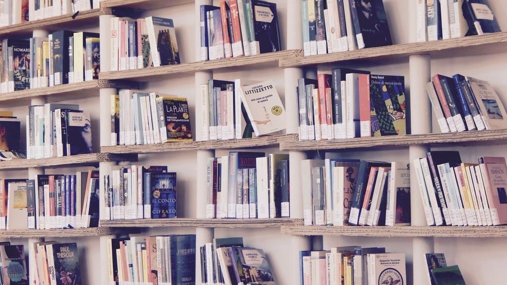 Otra dimensión: el indispensable papel de la lectura