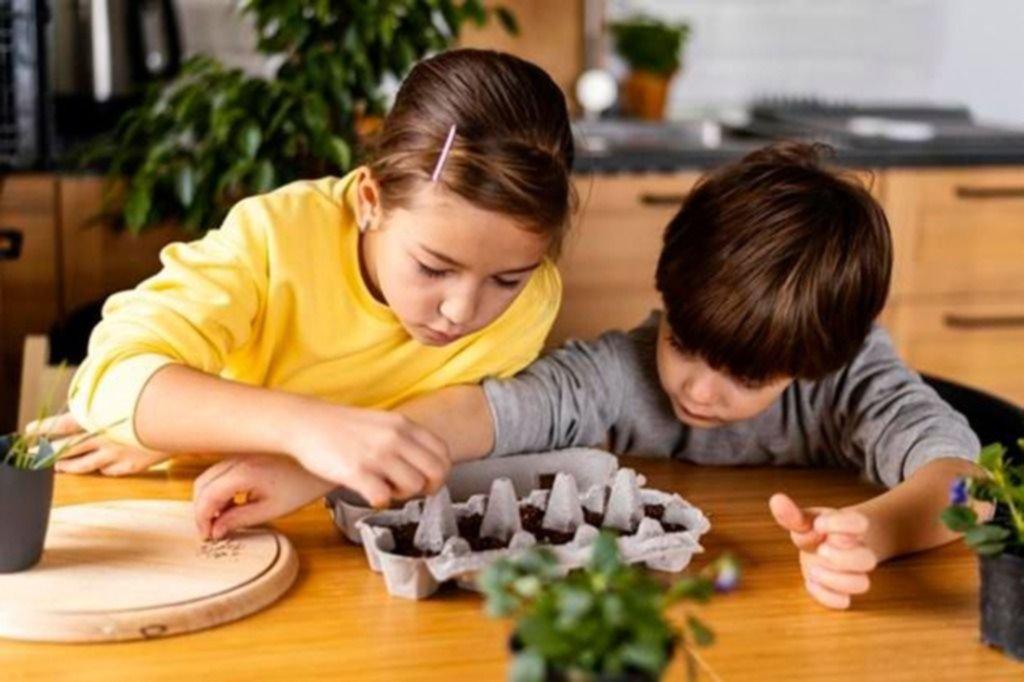 Plan verde para chicos: cómo construir un mini jardín