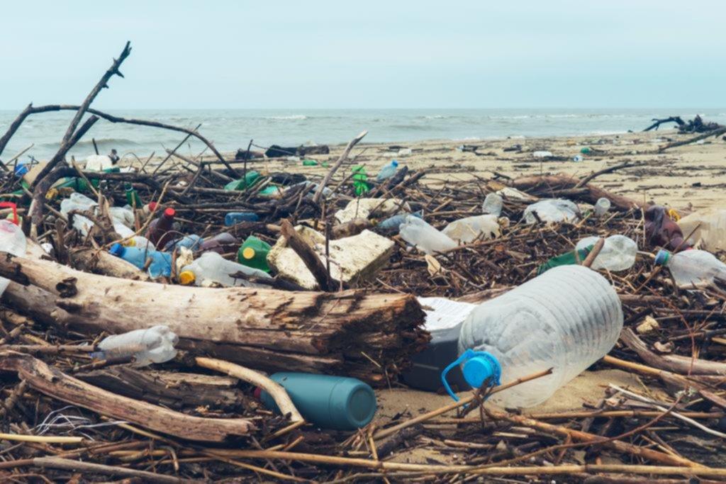 Para cuidar el medio ambiente, piden reducir la circulación de plásticos no reutilizables